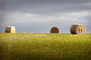 hay bales on the back road from Ballarat to the Surf Coast