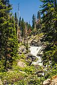2017 Bear Creek