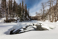 Deep snow surrounds the Little Susitna River in late winter at Hatcher Pass in Southcentral Alaska. Morning.