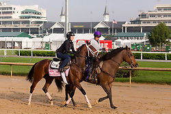 Oaks 142 hopeful Rachel's Valentina was on the track for training, Sunday, May 01, 2016 at Churchill Downs in Louisville.