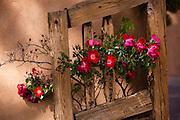 Flowers on the door to El Santuario de Chimayo on the High Road to Taos.