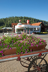 """Flowers in Downtown Truckee 3"" - These flowers in an old wagon were photographed along commercial row in historic Downtown Truckee, California. They Flying A can be seen in the background."