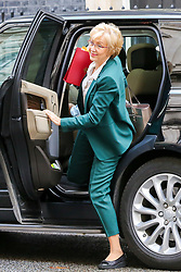 © Licensed to London News Pictures. 16/10/2019. London, UK. Secretary of State for Business Energy and Industrial Strategy ANDREA LEADSOM arrives in Downing Street to attend the weekly cabinet meeting. This week's cabinet meeting was postponed by one day on Tuesday 15 October amid a final push for a Brexit agreement that can be sealed in time for the European Council summit in Brussels on Thursday and Friday. Photo credit: Dinendra Haria/LNP