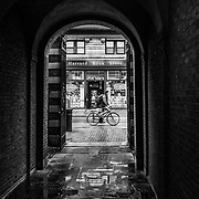 Harvard, Book Store, Boston, Travel, Books, Black and White