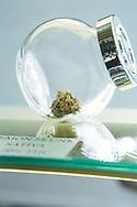 Cannabis till försäljning på det gröna apoteket The Agrestic i Corvallis, Oregon, USA
