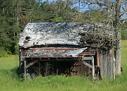 Old abandoned tobacco shed in the Georgia countryside.
