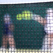 LONDON, ENGLAND - JULY 13:  The tennis court net on an outer court with a tennis player in action in the background during the Wimbledon Lawn Tennis Championships at the All England Lawn Tennis and Croquet Club at Wimbledon on July 13, 2017 in London, England. (Photo by Tim Clayton/Corbis via Getty Images)