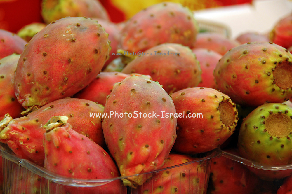 Tel Aviv, Israel, A fruit stall selling sabres - the fruit of a cactus Opuntia, at the Carmel Market