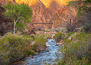 Looking downstream along Bright Angel Creek towards the Black Bridge near Phantom Ranch. Grand Canyon National Park in Arizona.