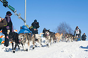 Mats Pettersson vid den ceremoniella starten av 2017 Iditarod, Anchorage, Alaska, USA<br /> OBS! annan fotograf &auml;n de andra bilderna, fotograf Shun Adachi, ange fotobyline: Shun Adachi