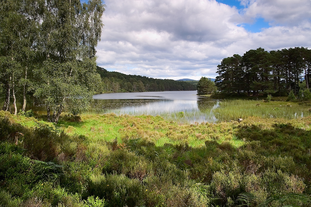 The Loch is steeped in history as it is set in one of the largest remaining ancient Caledonian forests; it's an appealing location for walkers and photographers.