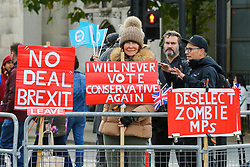 © Licensed to London News Pictures. 30/10/2019. London, UK. A Brexit protester holds 'I WILL NEVER VOTE CONSERVATIVE AGAIN' sign outside Houses of Parliament. On Tuesday 29 October 2019 MPs voted for a UK general election on 12 December 2019. Photo credit: Dinendra Haria/LNP