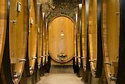 Italien, Toskana, Chianti, Castellina in Chianti Fattoria, Weinkeller..|..Italy, Tuscany, Chianti, Castellina in Chianti Fattoria, wine cellar