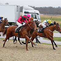 Kickingthelilly and Chris Catlin winning the 2.00 race
