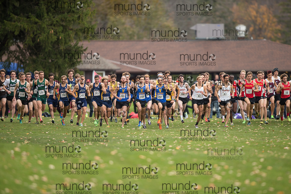 The start of the men's race at the 2013 CIS Cross Country Championships in London Ontario, Saturday,  November 9, 2013.<br /> Mundo Sport Images/ Geoff Robins