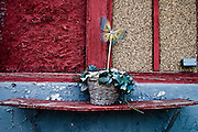 "A small flower pot sits next to a doorway of an abandoned home where blocks of abandoned homes and small signs of life are all that remain in certain areas of Gary, IN. Gary is part of America's Midwestern ""Rust Belt"", the heartland of the country and home to big unionized manufacturers like the auto and steel industries."