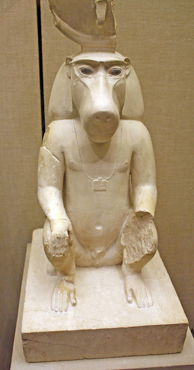 Thoth the God of Knowledge, as a Baboon.  Ptolemaic period, 305-30 BC.  The moon-god Thoth, is associated with all aspects of knowledge.