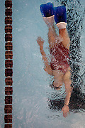 Lehi High School swimmer Amy Chapman glides into the wall during practice at the Lehi Legacy Center, Tuesday, Dec. 18, 2012. Chapman, 17, was born with fibular hemimelia and had both legs amputated when she was 13 months old.
