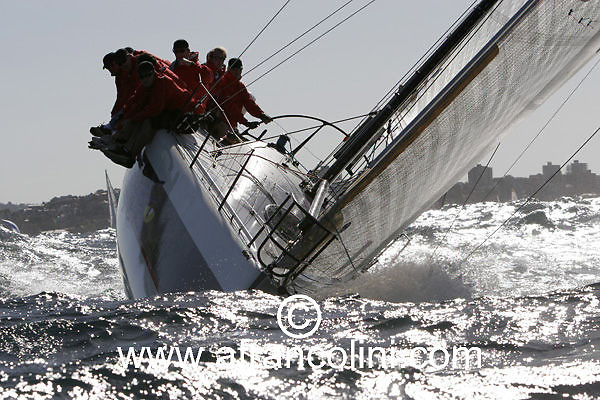 SAILING - BMW Winter Series 2005 - BLACK SNAKE - Sydney (AUS) - 29/05/05 - ph. Andrea Francolini