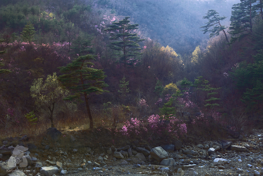 Colorful nature of South Hamgyong province, North Korea.