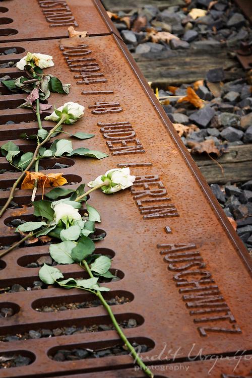 20/01/1944, 48 Jews, Auswitch destination