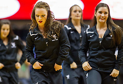 West Virginia dancers perform during a timeout at the WVU Coliseum.