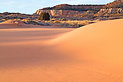 Sunset on Coral Pink Dunes State Park Utah