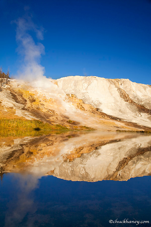 Canary Springs Terrace reflects in small pond at the Mammoth Hot Springs area in Yellowstone National Park in Wyoming