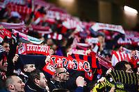 Supporters de Lille - 14.01.2014 - Lille / Nantes - 1/4Finale Coupe de la Ligue<br /> Photo : Dave Winter / Icon Sport