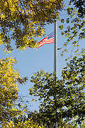 American flag with fall foliage in Boston Common.