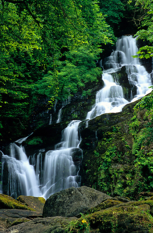 Muckross Waterfall flows through a forest, in Killarney National Park, Ireland