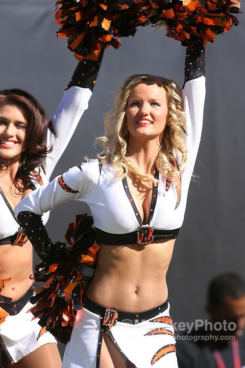 Cincinnati cheerleader seen at Paul Brown Stadium in Cincinnati, Ohio on October 29, 2006.