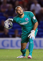 Brighton and Hove Albion goalkeeper Niki Maenpaa