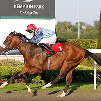 Roys Legacy and Michael J Murphy winning the 5.50 race