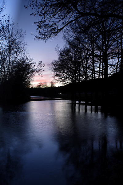 Stock photo of the silhouette of cypress trees along a river in the Texas Hill Country after sunset