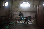 old traditional  stables in the chateau de Beauvoir in chaumes en brie dpt 77 France   /  Etables du chateau de beauvoir a Chaumes en brie