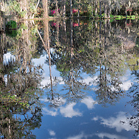 Beautiful reflections of cypress trees and Spanish moss, and multicolored azalea bushes, backed by the cloud filled sky. Magnolia Plantation, Charleston, SC