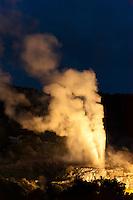 The 30 meter high Pohutu Geyser erupting, Illuminated for a night view at the Te Puia (New Zealand Maori Arts & Crafts Institute), Whakarewarewa Thermal Valley, Rotorua, North Island, New Zealand.