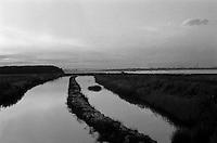 """Il mare piccolo Ë un mare artificiale che fu fatto realizzare da re Ferdinando I di Napoli nel 1481. Per questo Taranto Ë conosciuta come """"la citt? dei due mari"""", il Mare Grande e, appunto, il Mare Piccolo. Nel seno del Mare Piccolo inizia la coltivazione dei mitili (le cozze""""), favorita dalla presenza dei c.d. citri, ovvero """"sorgenti di acqua dolce che sboccano dalla crosta sottomarina [e che] rappresentano lo sbocco naturale di quei corsi d'acqua che in epoche assai remote hanno dato origine alle gravine in Puglia, e che scomparsi oggi dalla superficie scorrono in reti idrografiche sotterranee sfociando nel Mar Ionio e nel Mare Adriatico..Nella parte settentrionale di entrambi i seni del Mar Piccolo di Taranto, sono localizzate rispettivamente 20 e 14 sorgenti sottomarine, che apportano acqua dolce non potabile mescolata con acqua salmastra a contenuto variabile di sali"""" (fonte Wikipedia, http://it.wikipedia.org/wiki/Citri)..Purtroppo il Mar Piccolo, come in genere la citt? di Taranto, Ë interessato dalle problematiche di inquinamento ambientale riconducili per la maggior parte, all'insediamento urbanistico dell'ILVA che, nella fotografia, appare minacciosamente sullo sfondo"""