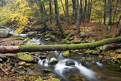 Sanderson Brook.  Chester-Blanford State Forest.  Connecticut River tributary.  Chester, Massachusetts.