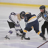 Women's Ice Hockey: University of St. Thomas (Minnesota) Tommies vs. University of Wisconsin-Eau Claire  Blugolds