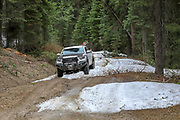 Remnant snow drifts are just one obstacle to contend with during a spring bear hunt with hounds in Idaho.