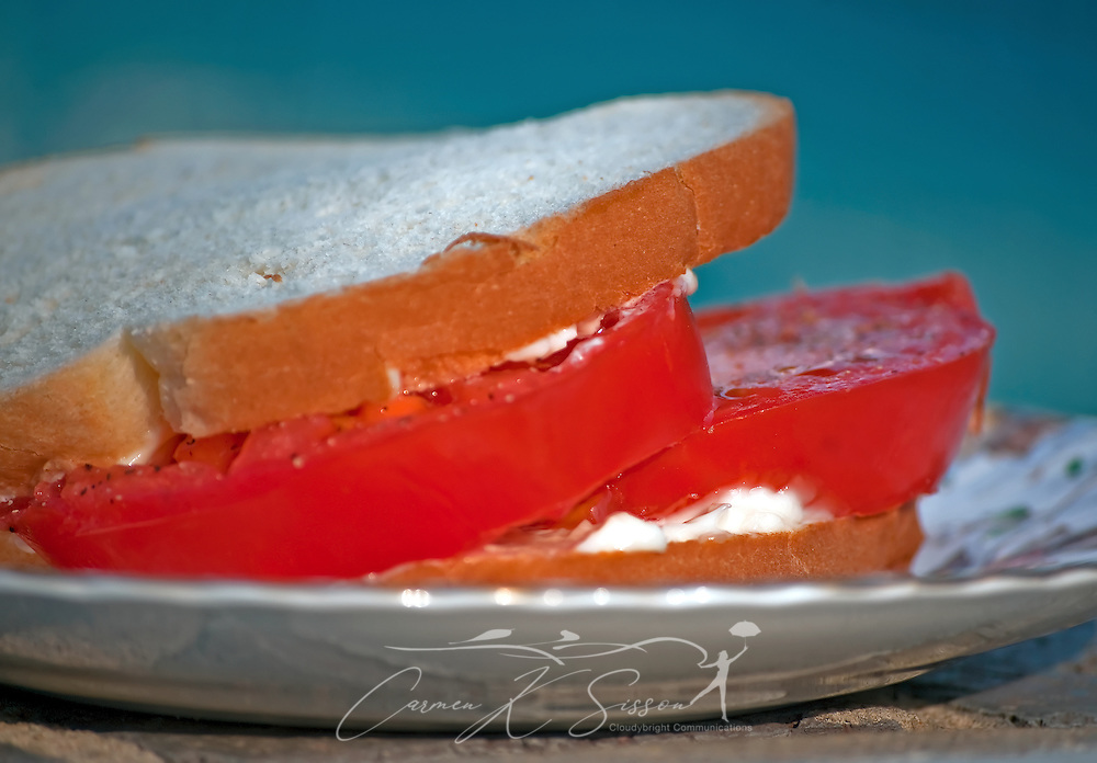 A tomato sandwich makes a poolside snack May 12, 2011 in Columbus, Mississippi. (Photo by Carmen K. Sisson/Cloudybright)