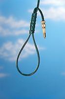 Garden Hose Noose