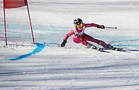 Piches Invitational U12 girls Giant Slalom with Gunstock Ski Club.  ©2016 Karen Bobotas Photographer