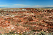 Petrified Forest and Painted Desert images from AZ