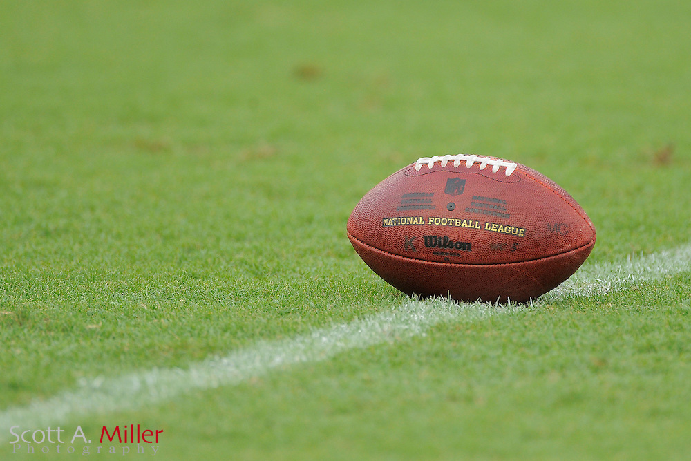 An NFL football sits on the field at Raymond James Stadium on Aug. 18, 2011 in Tampa, Fla...SPECIAL TO FOXSPORTS.COM/SCOTT A. MILLER