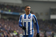 Brighton & Hove Albion winger Anthony Knockaert (11) during the EFL Sky Bet Championship match between Brighton and Hove Albion and Burton Albion at the American Express Community Stadium, Brighton and Hove, England on 11 February 2017.