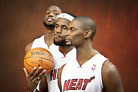 LeBron Raymone James, King James, Dwyane Wade, Chris Bosh