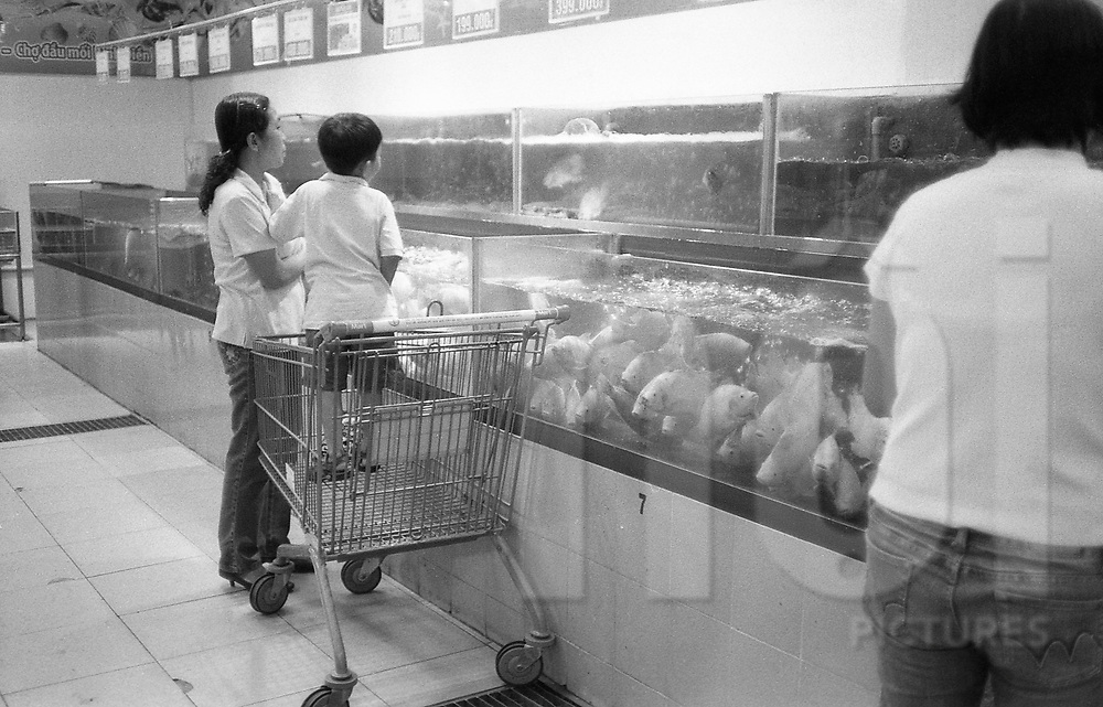 A little vietnamese boy helps his mother choose fish in a supermarket, HCMC, Vietnam, Asia.